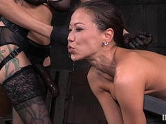 oriental, Asian BDSM, Av Huge Melons, Asian Bondage, Asian Fisting, Asian Hard Fuck, Asian Hardcore, Asian Lesbian Girl, Asian Tits, BDSM, Milf Tits, blondes, torture, Huge Dildo, fisted, fuck Videos, Dp Hard Fuck Hd, Hardcore, Lesbian, Lesbian Domination, Lesbian Bondage Domination, Teen Lesbian Fisting, Lezdom, Girl on Top Fucking, Skinny, Escort, strap on, Lesbian Strapon Orgasm, Huge Natural Tits, Toys, Adorable Av Girls, Asian Big Natural Tits, Perfect Asian Body, Perfect Body Anal Fuck, Titties Fucked