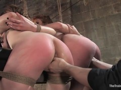 fuck, Hd, Hogtied, Mature Perfect Body, Submission